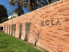Brand New Home Walk To Ucla In Los Angeles *D6 photos Exterior