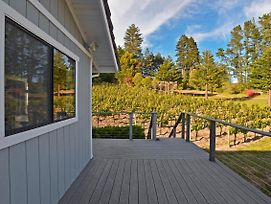 2Br Sebastopol Townhome On A Pinot Noir Vineyard! photos Exterior