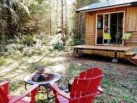 New Remodeled Tiny Cabin - 1 Min To Mt Rainier Nisqually Entrance! Fern Cabin photos Exterior