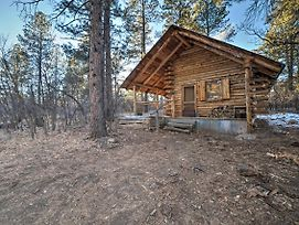 Secluded Cabin W/Fire Pit By San Juan Forest! photos Exterior