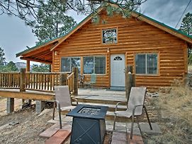 Alpine Cabin On 3 Acres W/Mtn View - Steps To Lake photos Exterior