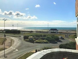 Seashells photos Exterior