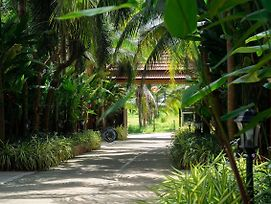 5 Br'S Orchids & Palm Trees Garden Phuket Paradise Resort For Rent photos Exterior