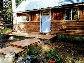 Remodeled Tiny Cabin - 1 Mile To Mt Rainier National Park! Sage Cabin photos Exterior