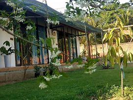 Bebe Homestay Phu Quoc photos Exterior