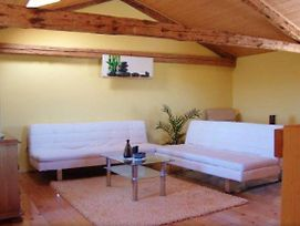 Holiday House With A Parking Space Bonaci, Central Istria - Sredisnja Istra - 18104 photos Exterior