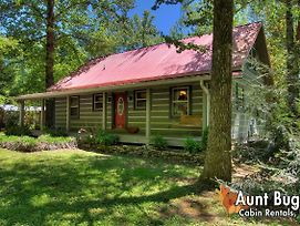 Living Waters #376 By Aunt Bug'S Cabin Rentals photos Exterior