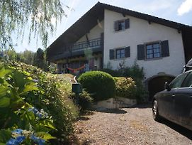 Lullaby House - Large, Full Comfort 5 Star Chalet House In The Vosges photos Exterior