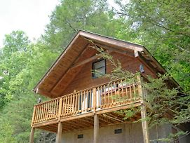 Wild Thing #1525 By Aunt Bug'S Cabin Rentals photos Exterior