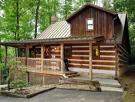 Parkside Party #1676 By Aunt Bug'S Cabin Rentals photos Exterior