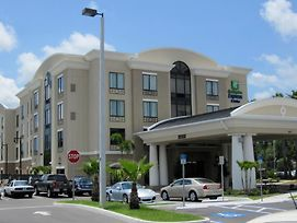 Holiday Inn Express Hotel & Suites Tampa -Usf-Busch Gardens photos Exterior