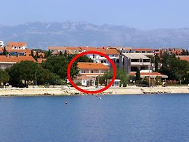 Apartments And Rooms By The Sea Novalja 4067 photos Exterior