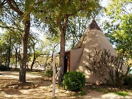#5 Yellow Flower - Tipis On The Guadalupe photos Exterior
