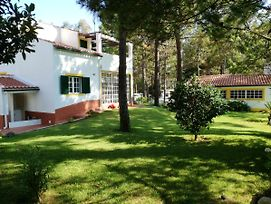 Apartment With 3 Bedrooms In Melides With Wonderful Sea View Enclosed Garden And Wifi photos Exterior