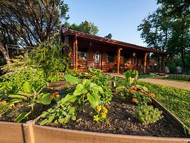 Pet Friendly Cabin 4 - 15 Minutes From Magnolia And Baylor photos Exterior