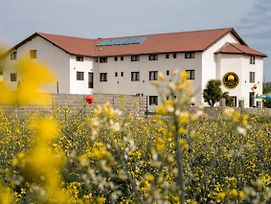 Vila Wallenthal photos Exterior
