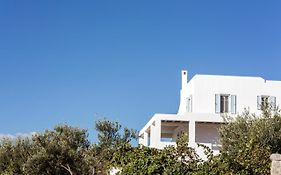 Naxian Collection Hotel Naxos Island