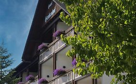 Landhotel Henkenhof Willingen photos Exterior