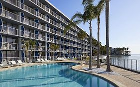 Radisson Bay Harbor Hotel Tampa Fl