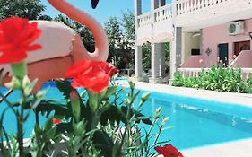 Flamingo Apartments Corfu Island