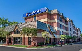 Comfort Inn Near Greenfield Village Dearborn, Mi 3*