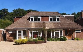 Abacus Bed And Breakfast Camberley