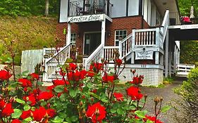 The Grafton Lodge Lake Lure Nc