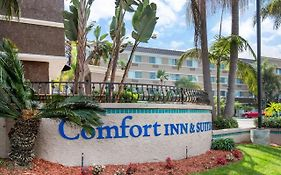 Comfort Inn And Suites San Diego