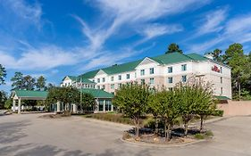 Hilton Garden Inn The Woodlands Tx