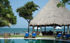 Turtle Inn Belize Reviews