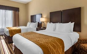 Comfort Inn Triadelphia West Virginia