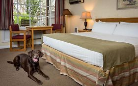 Village Green Resort Cottage Grove Oregon