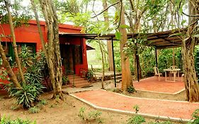 Bamboo Banks Farm And Guest House Masinagudi