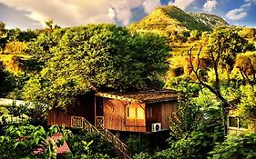 Tree House Resort