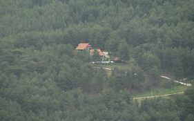 Dikencik Cottages Uzumlu