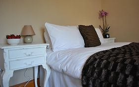 Amber Guesthouse Derby