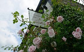 The Mulberry Inn Glyn Ceiriog United Kingdom