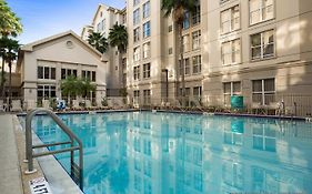 Homewood Suites International Drive Orlando Fl