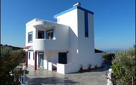 The Olive Branch Villa Kos Island
