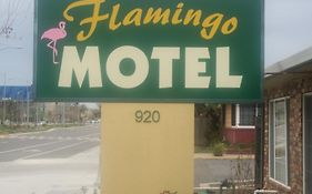 Flamingo Motel West Sacramento