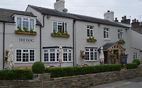 The Dog Peover