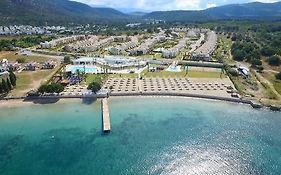 Apollonium Spa & Beach Resort Didim