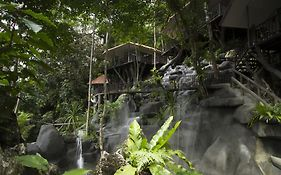 Rock And Treehouse Resort