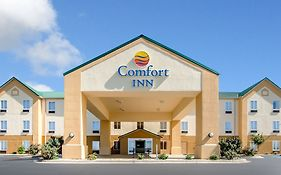 Comfort Inn Lexington South Nicholasville Ky