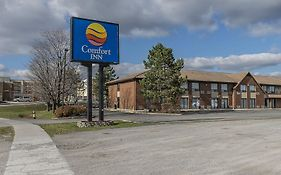 Comfort Inn Hwy. 401 Kingston