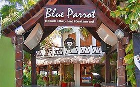 Blue Parrot Suites Playa Del Carmen