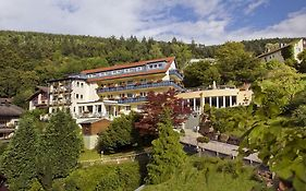 Hotel Rothfuss Bad Wildbad