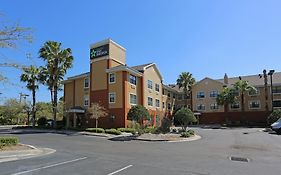 Extended Stay Tampa Spruce St