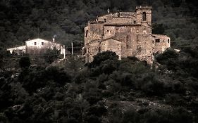 Castell D'orpi