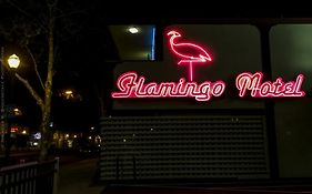 Flamingo Motel San Jose Ca